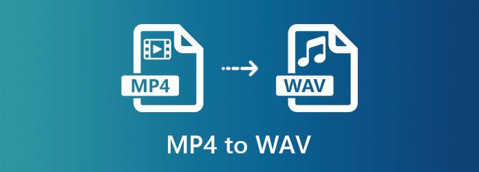 MP4 для WAV