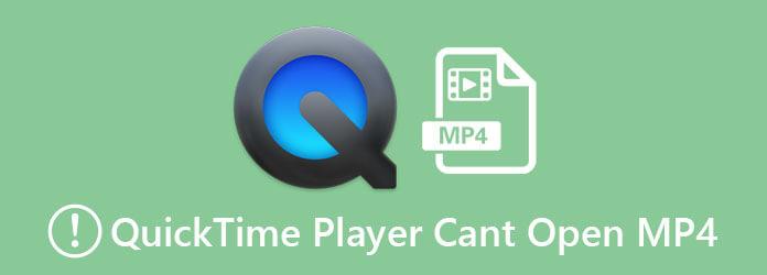 QuickTime Player не может открыть MP4